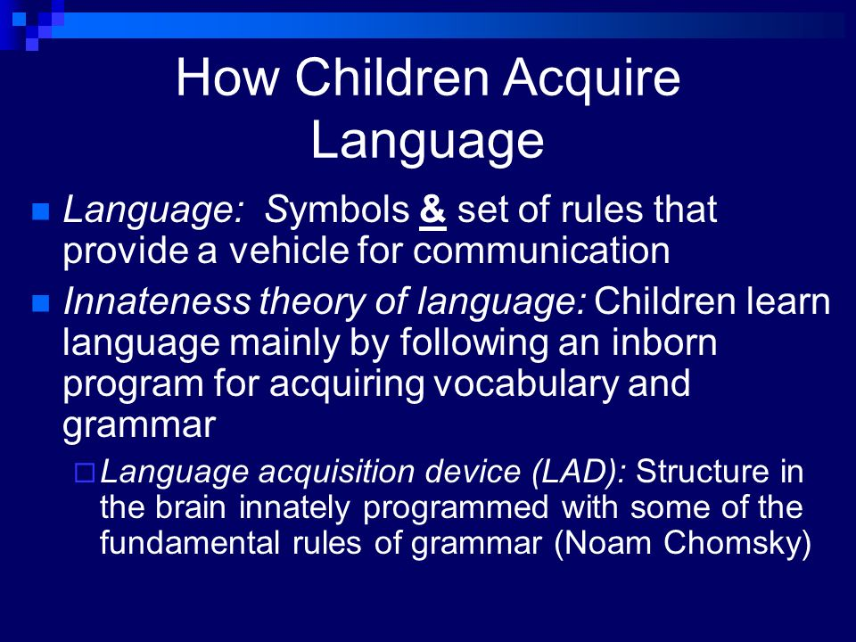 Essay Questions On Language Acquisition