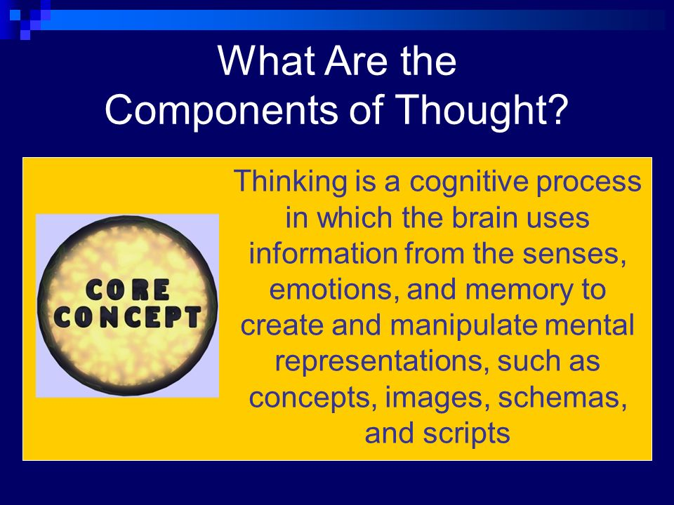 mental images concepts and schemas How can the use of mental images, concepts and schemas to organise our thinking help us to improve our memory.