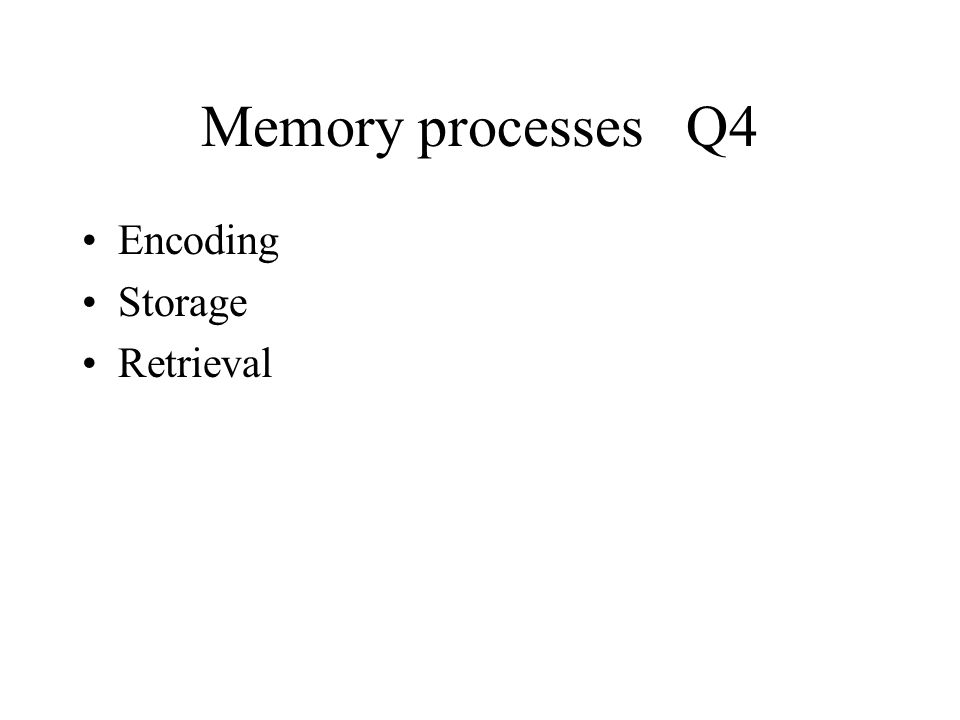 Memory Q1 Persistence of learning over time through the storage ...