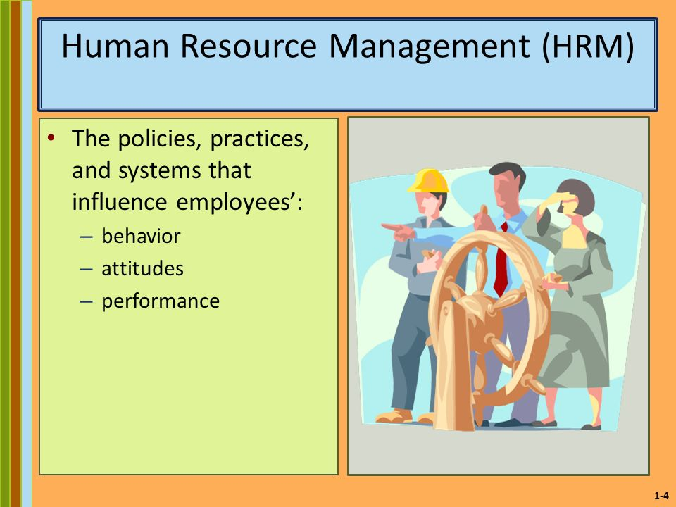 performance management in hrm pdf