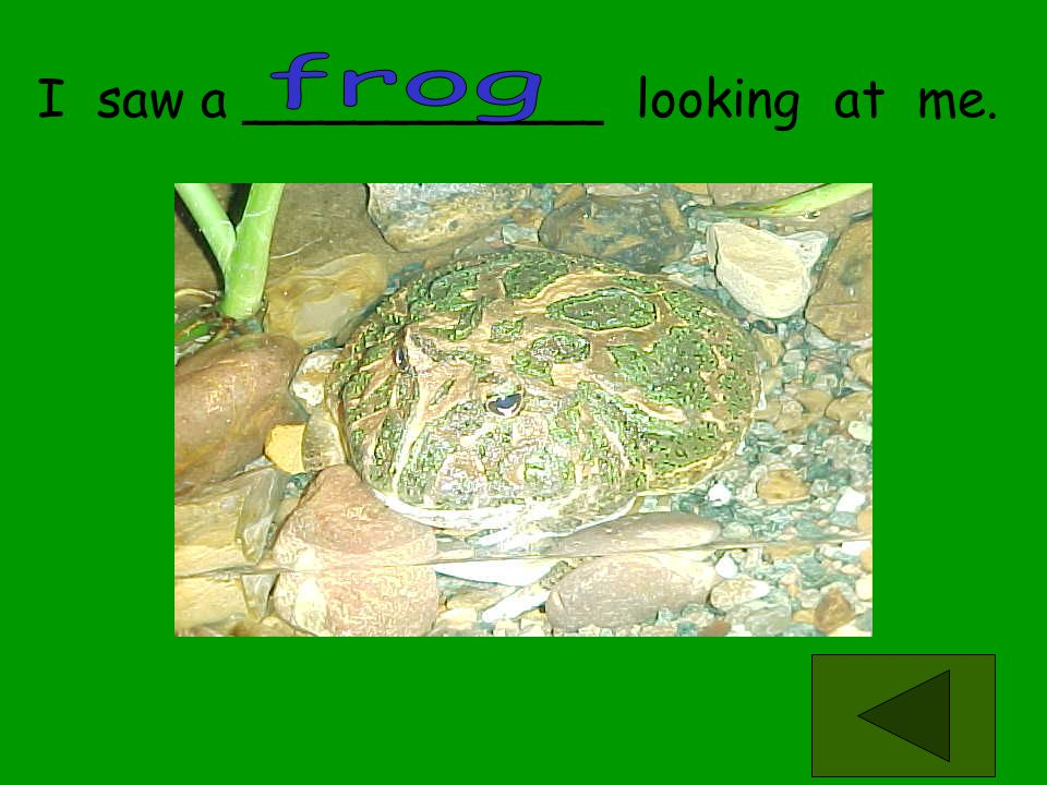 frog I saw a ___________ looking at me.