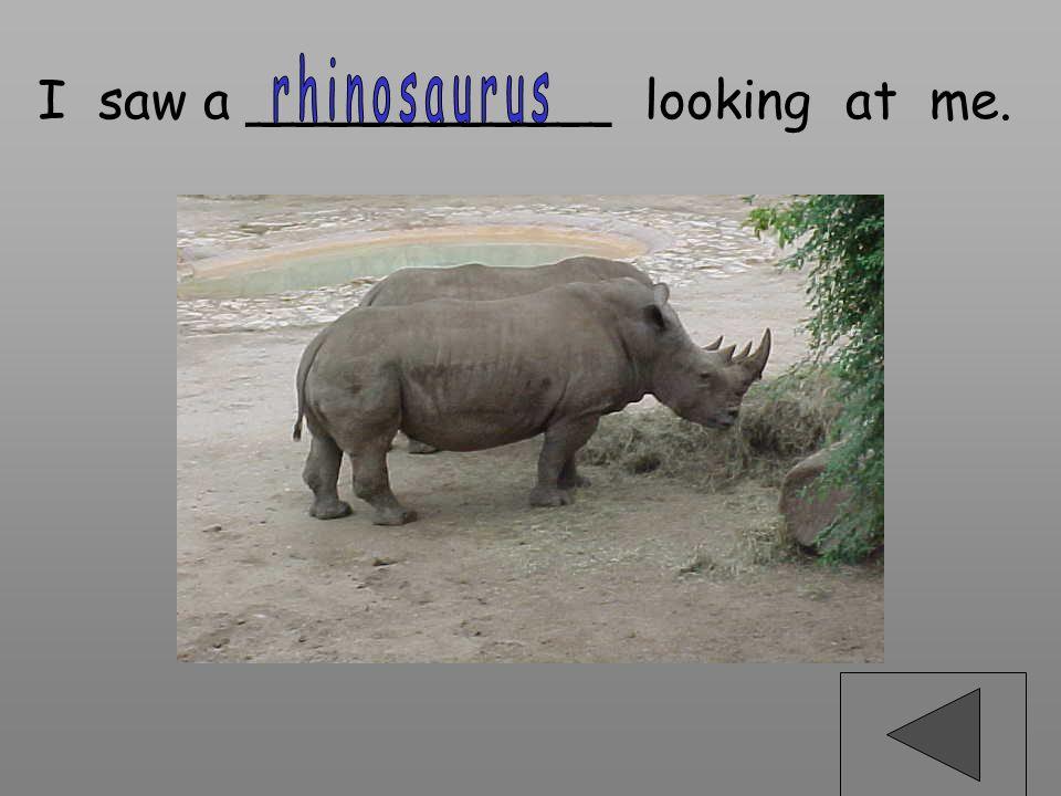 rhinosaurus I saw a ___________ looking at me.