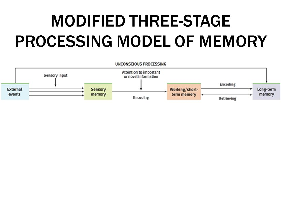 the process and stages of memory And shiffrin (1968) posited that information goes through three stages: sensory, short-term memory, and long-term memory today, researchers to store and process limited amounts of information of an imme-multiple systems model declarative (or explicit) memory working memory semantic.