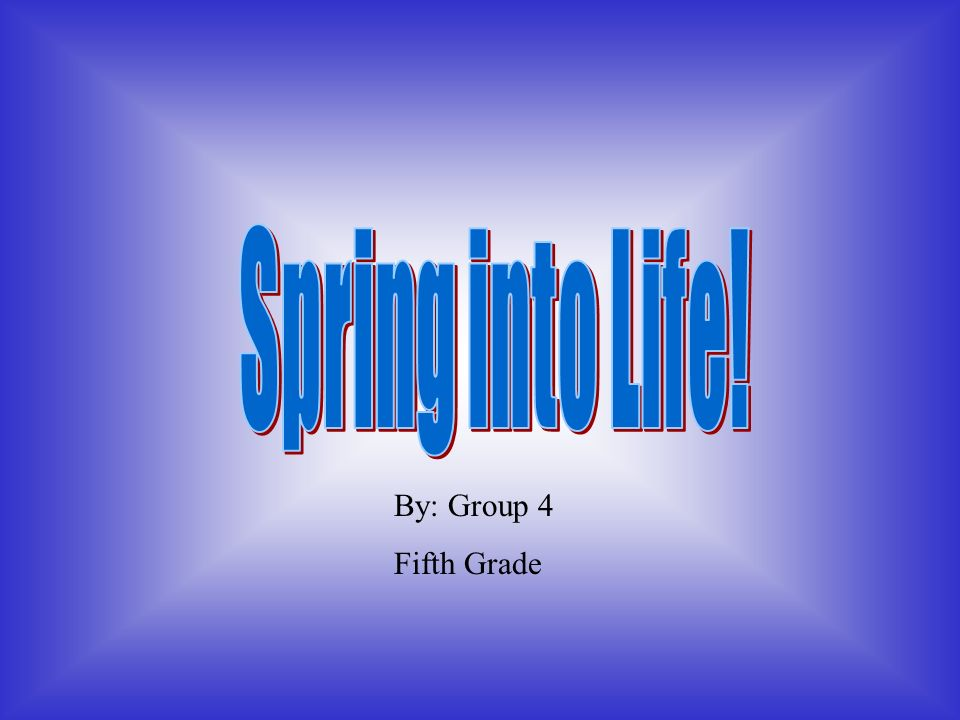 Spring into Life! By: Group 4 Fifth Grade