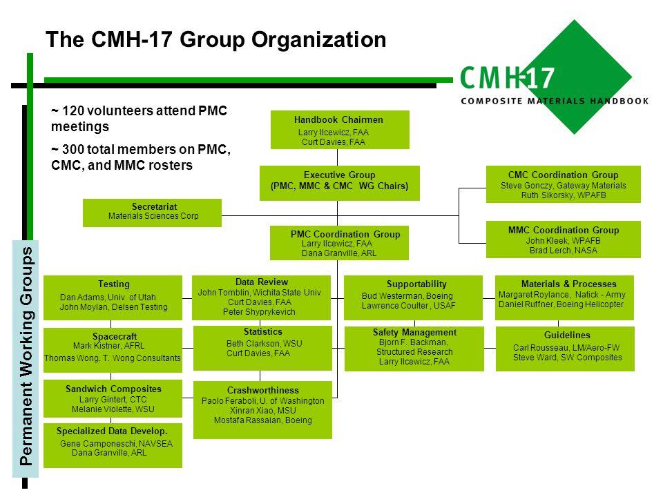 The CMH-17 Group Organization
