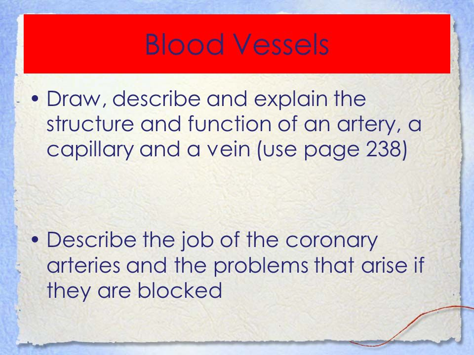 structure and function of blood essay As a result of cell adaptation, the function of the cell influences its shape and internal structure this is visible in specialized cells such as red blood cells.