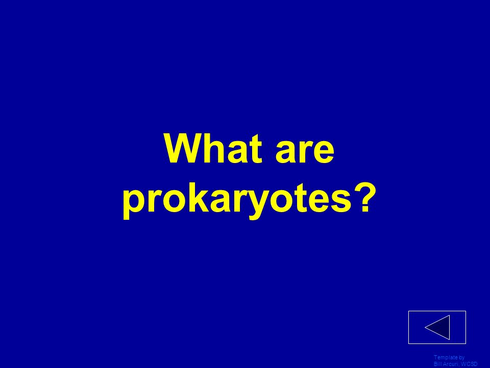 What are prokaryotes Template by Bill Arcuri, WCSD