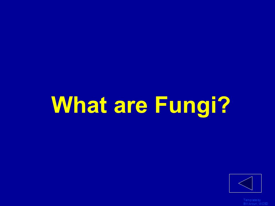 What are Fungi Template by Bill Arcuri, WCSD