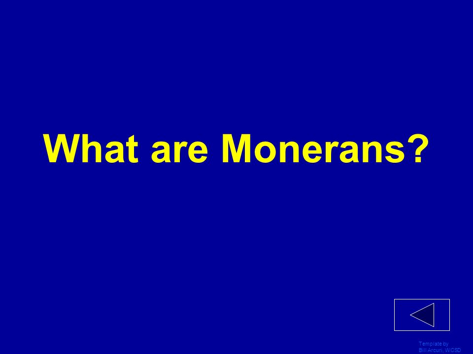 What are Monerans Template by Bill Arcuri, WCSD