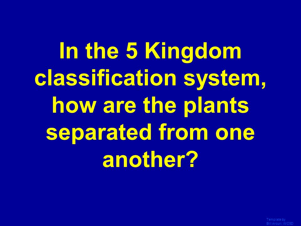 In the 5 Kingdom classification system, how are the plants separated from one another