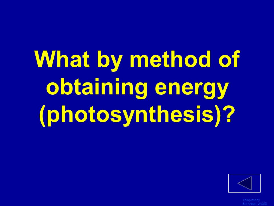 What by method of obtaining energy (photosynthesis)