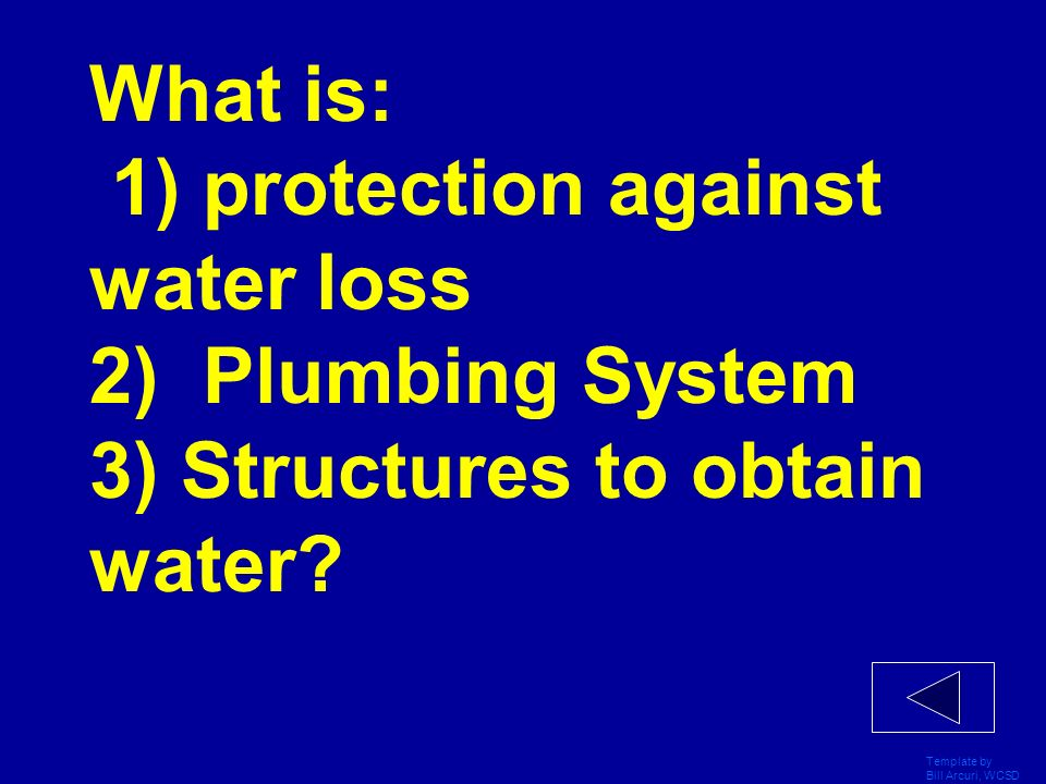 What is: 1) protection against water loss 2) Plumbing System 3) Structures to obtain water