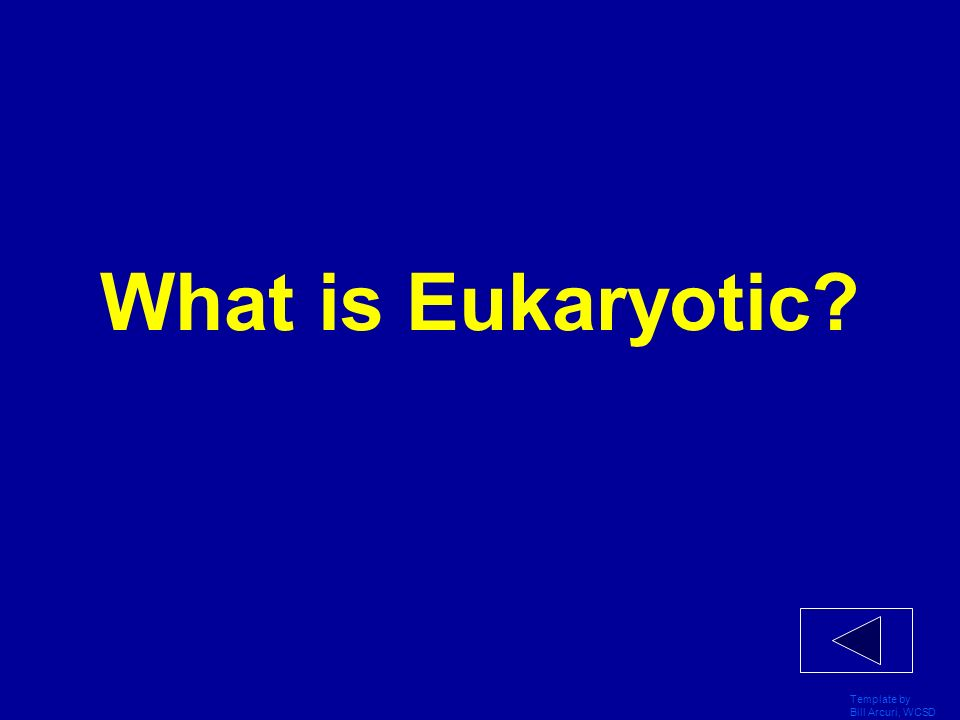 What is Eukaryotic Template by Bill Arcuri, WCSD