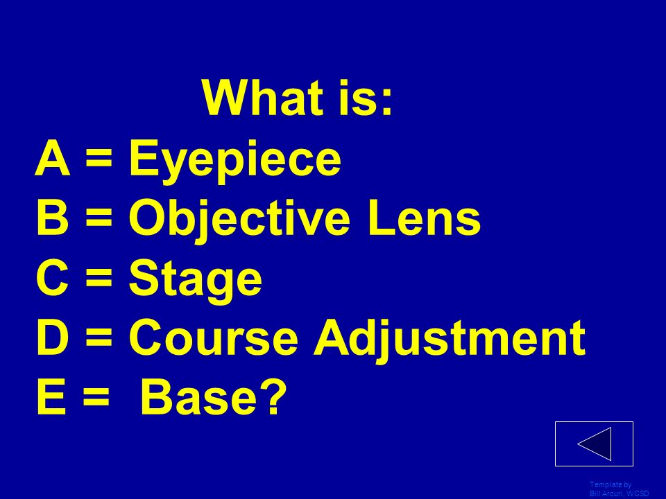 What is: A = Eyepiece B = Objective Lens C = Stage D = Course Adjustment E = Base