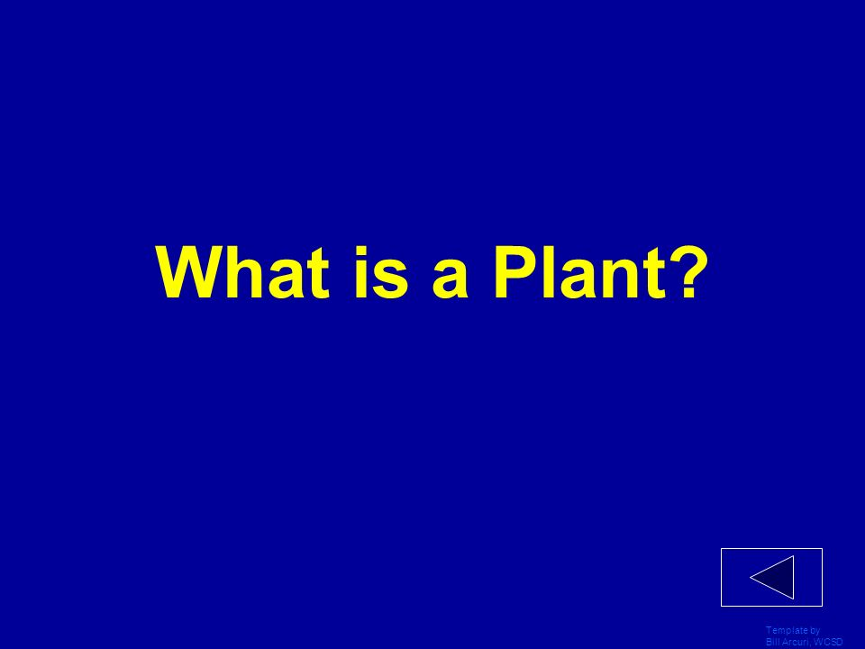 What is a Plant Template by Bill Arcuri, WCSD