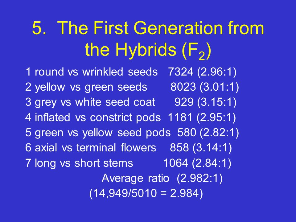 5. The First Generation from the Hybrids (F2)