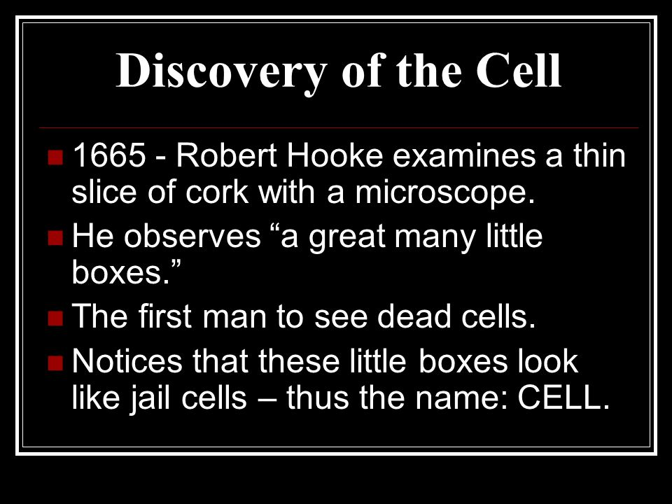 Discovery of the Cell Robert Hooke examines a thin slice of cork with a microscope. He observes a great many little boxes.
