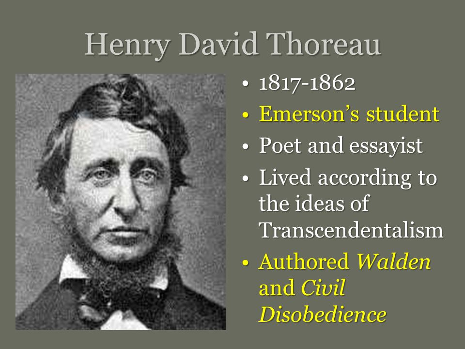 Transcendentalism Of Henry David Thoreau Essay Homework Sample  Transcendentalism Of Henry David Thoreau Essay Essay On English Teacher also Good Health Essay Example Of A Thesis Statement For An Essay