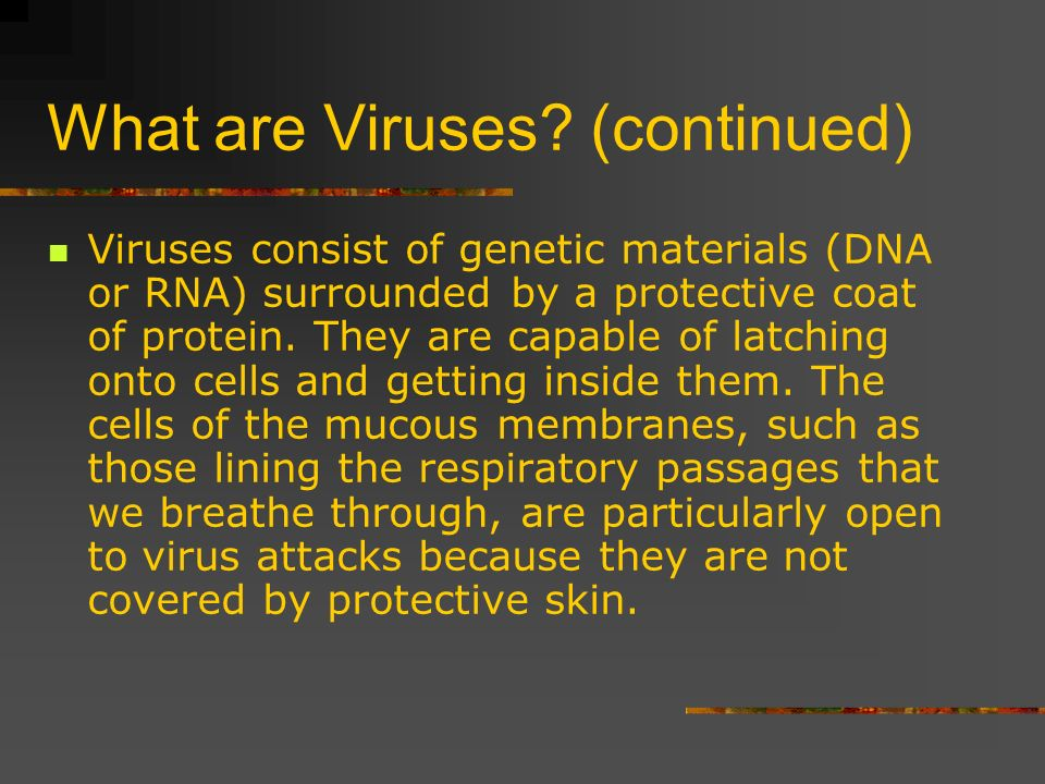 What are Viruses (continued)