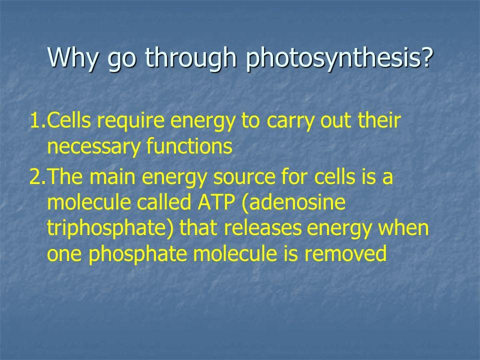 Why go through photosynthesis