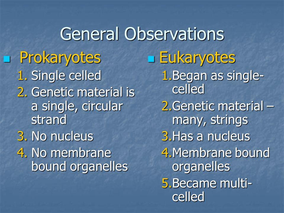 General Observations Prokaryotes Eukaryotes Single celled