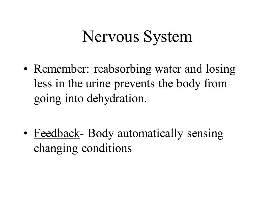Nervous System Remember: reabsorbing water and losing less in the urine prevents the body from going into dehydration.