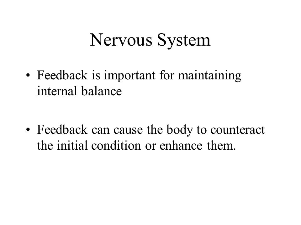 Nervous System Feedback is important for maintaining internal balance