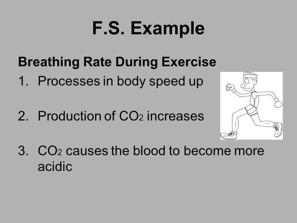 F.S. Example Breathing Rate During Exercise Processes in body speed up