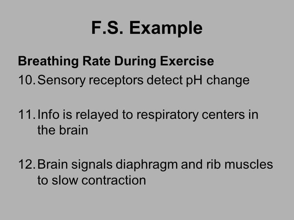 F.S. Example Breathing Rate During Exercise