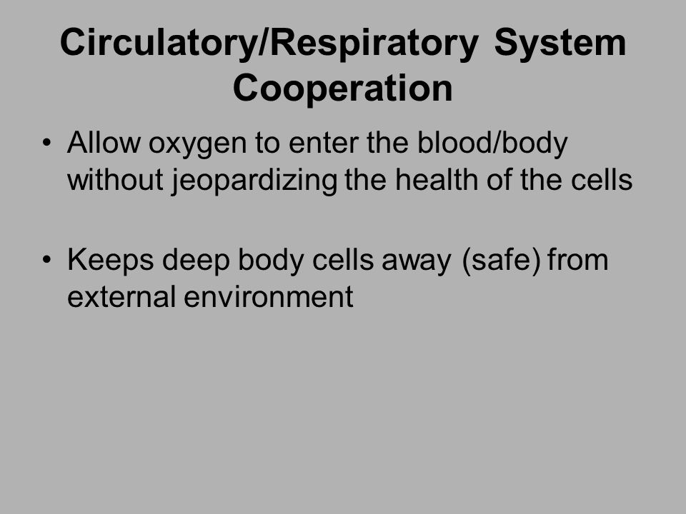 Circulatory/Respiratory System Cooperation