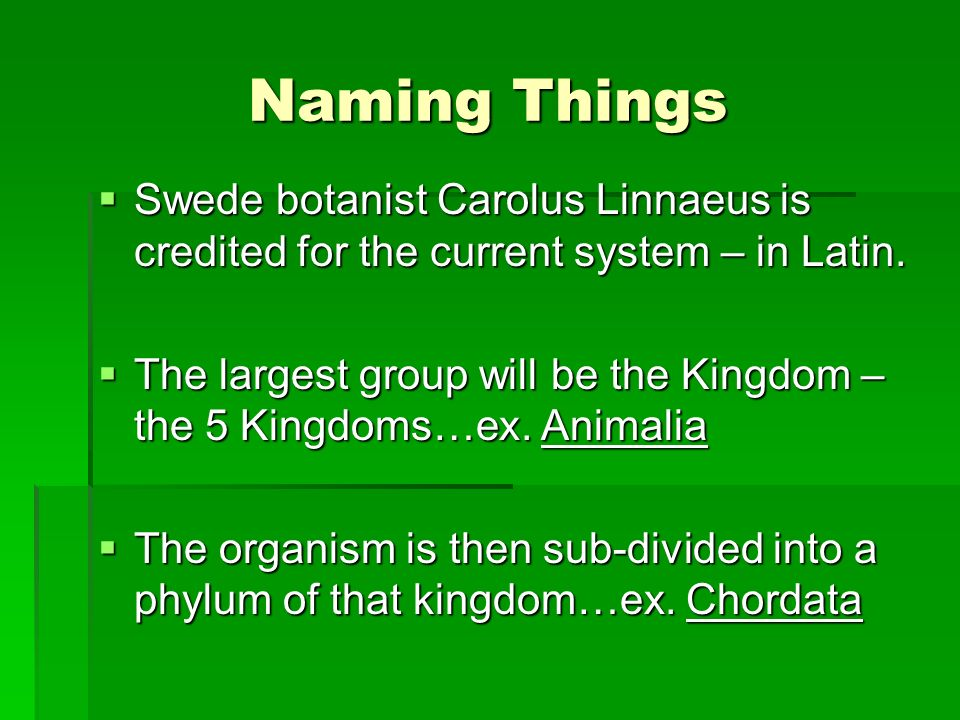 Naming Things Swede botanist Carolus Linnaeus is credited for the current system – in Latin.