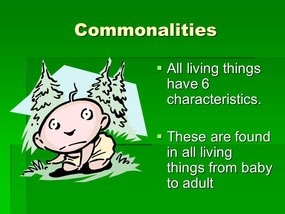 Commonalities All living things have 6 characteristics.