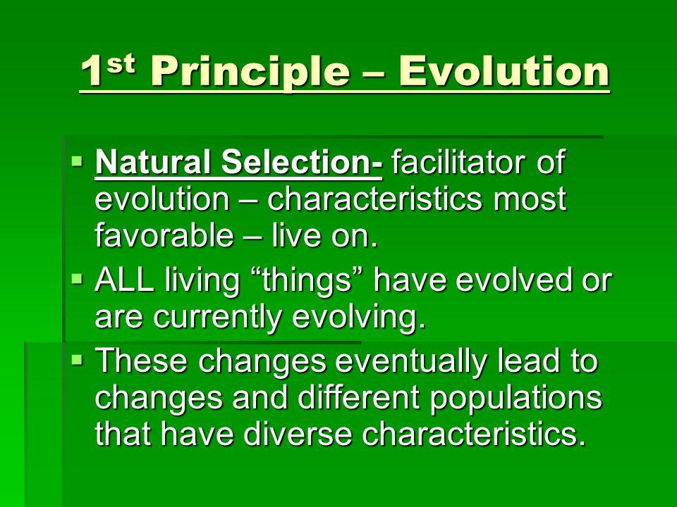 1st Principle – Evolution