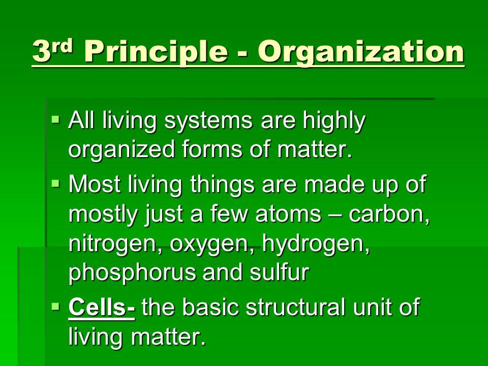 3rd Principle - Organization