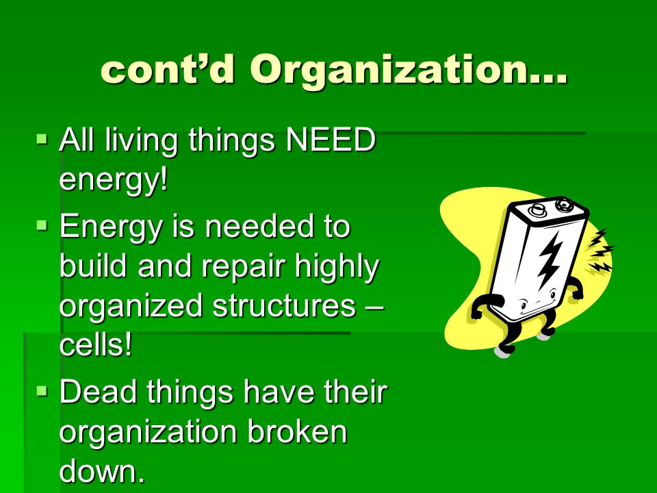 cont'd Organization… All living things NEED energy!
