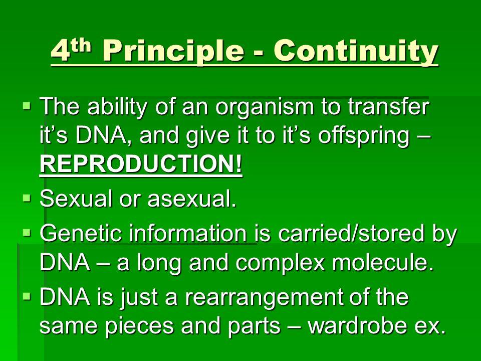 4th Principle - Continuity