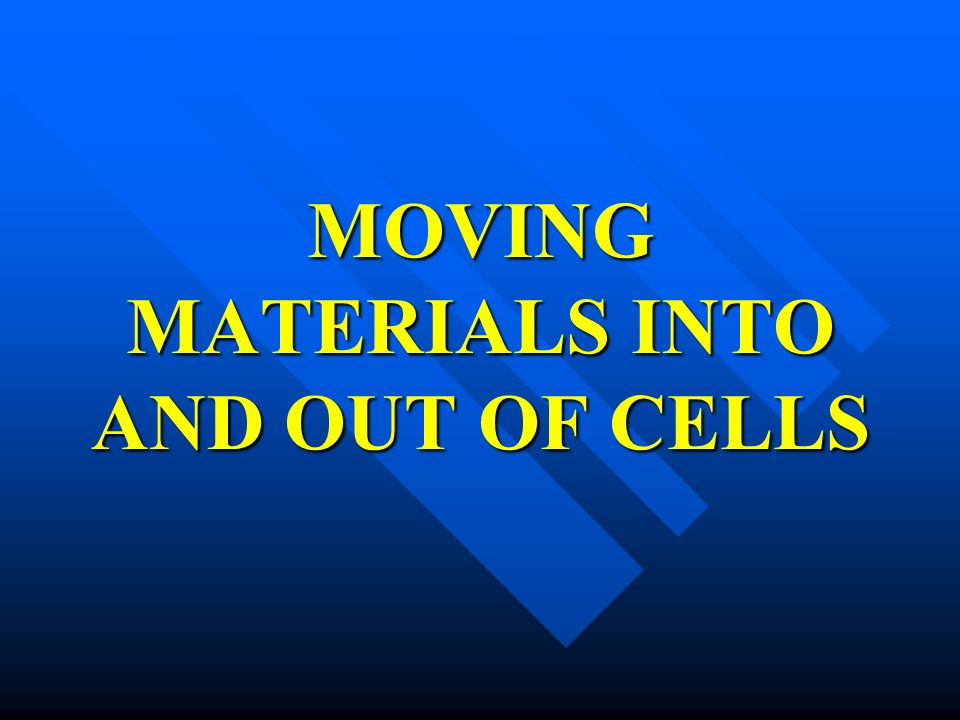 MOVING MATERIALS INTO AND OUT OF CELLS