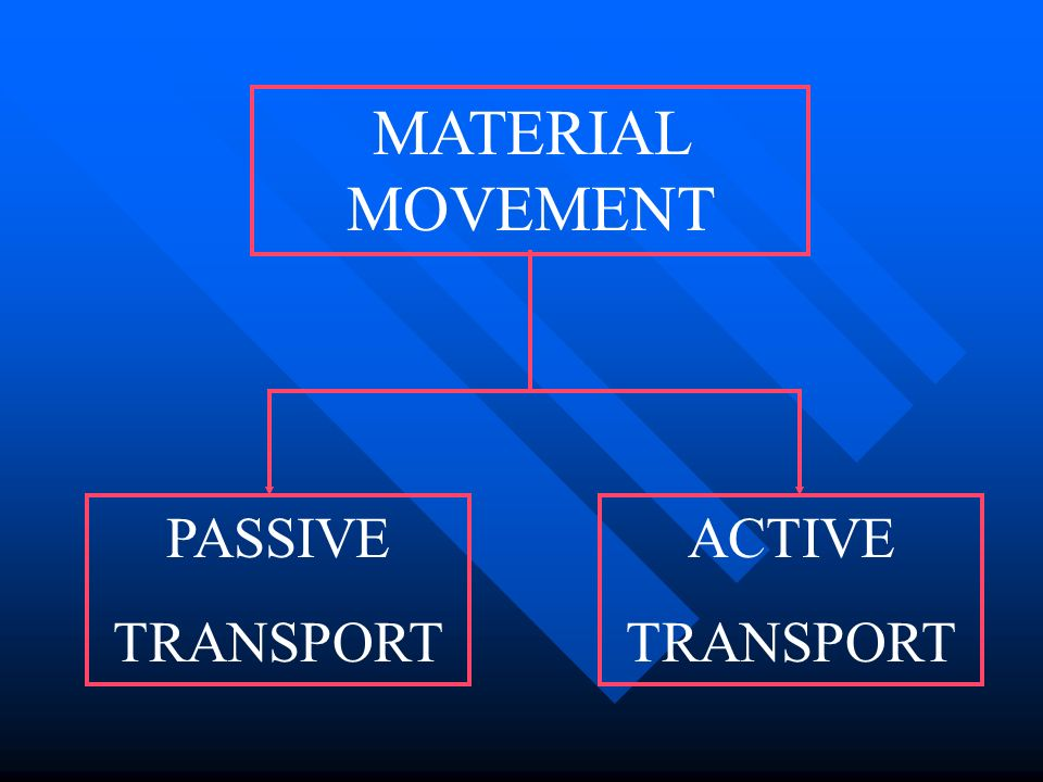 MATERIAL MOVEMENT PASSIVE TRANSPORT ACTIVE TRANSPORT
