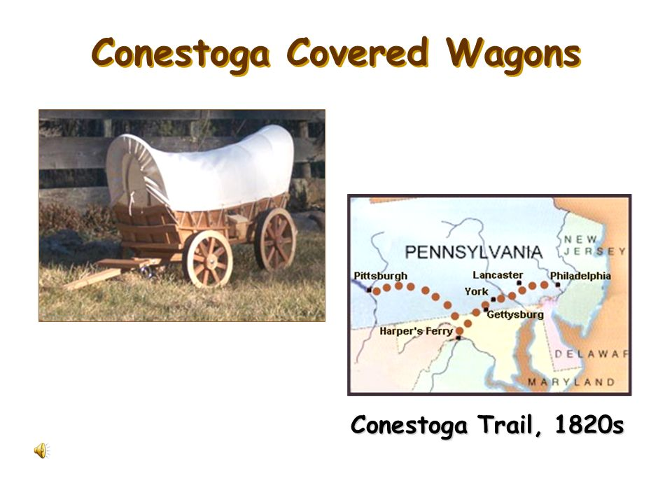 Conestoga Covered Wagons
