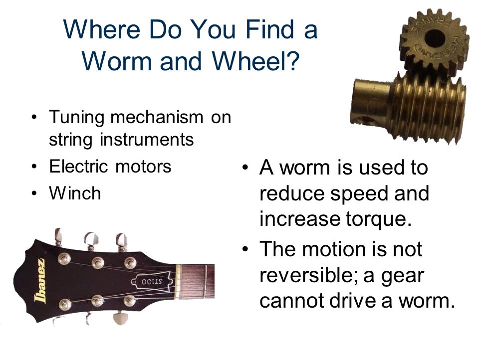 Where Do You Find a Worm and Wheel