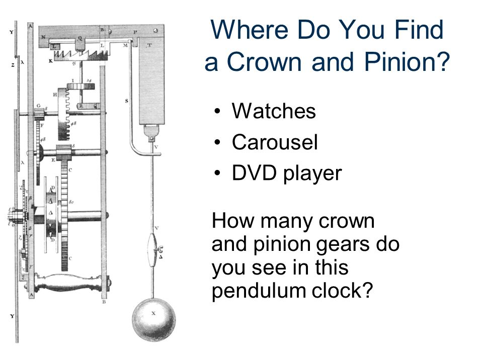 Where Do You Find a Crown and Pinion