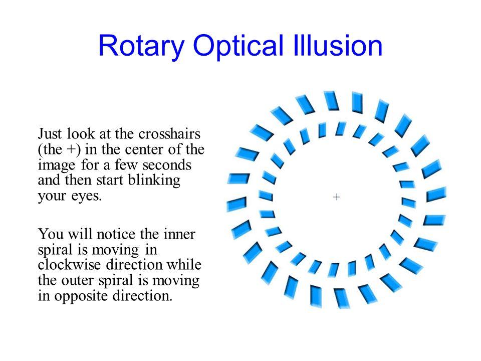 Rotary Optical Illusion