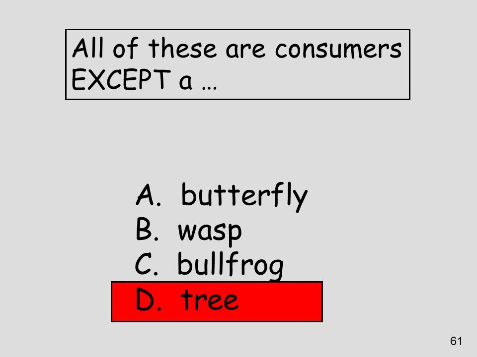 All of these are consumers