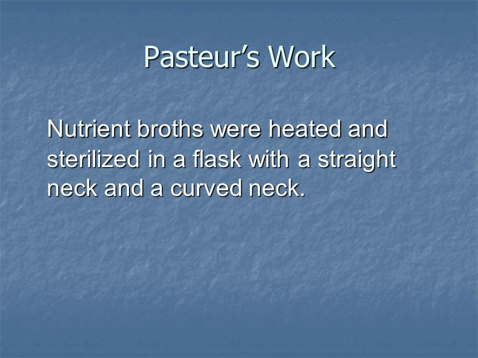 Pasteur's Work Nutrient broths were heated and sterilized in a flask with a straight neck and a curved neck.