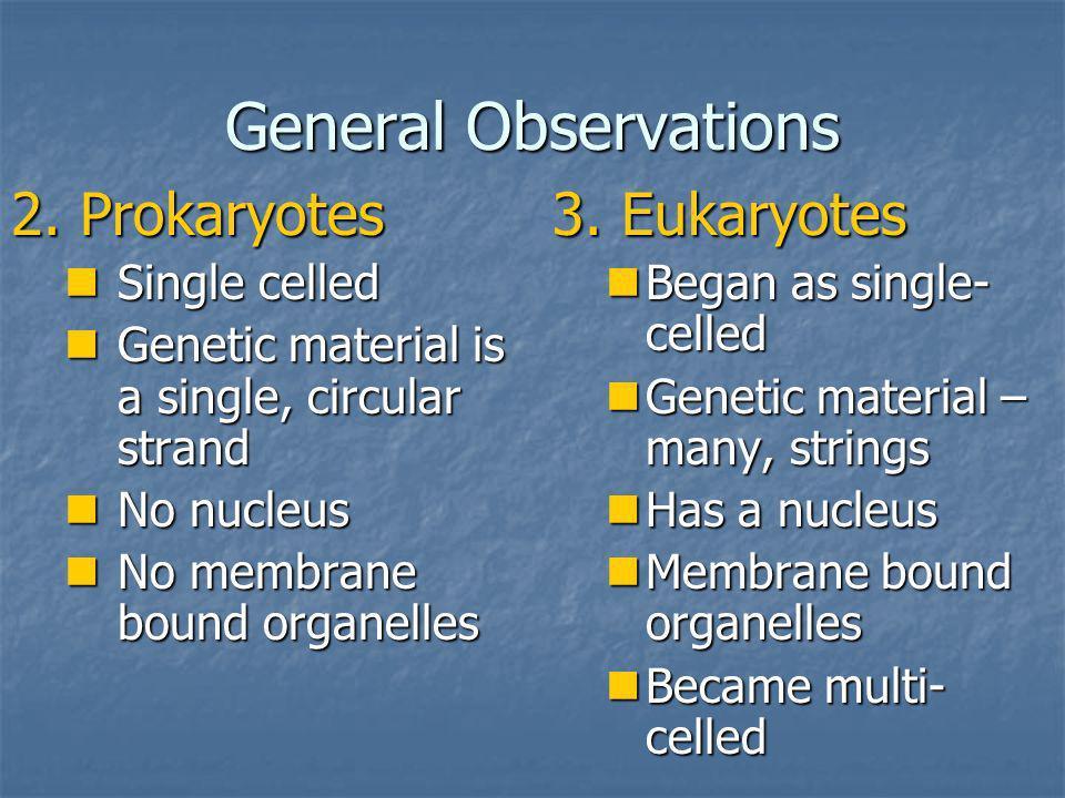 General Observations 2. Prokaryotes 3. Eukaryotes Single celled
