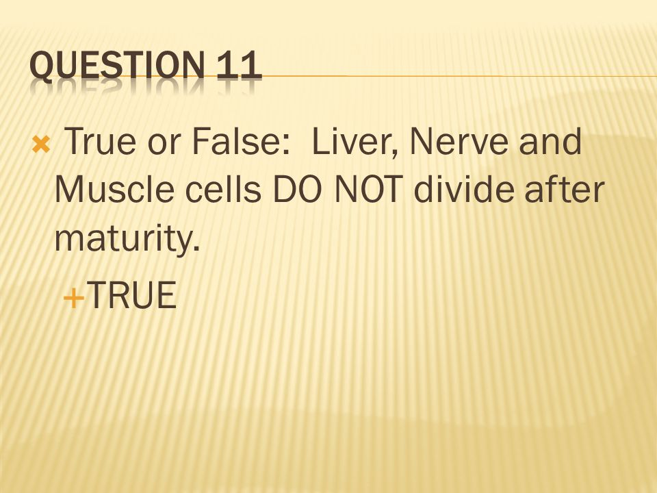 Question 11 True or False: Liver, Nerve and Muscle cells DO NOT divide after maturity. TRUE
