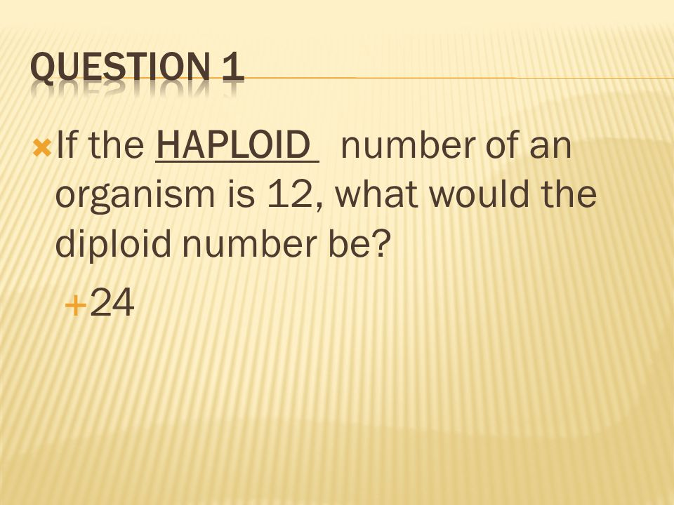 Question 1 If the HAPLOID number of an organism is 12, what would the diploid number be 24