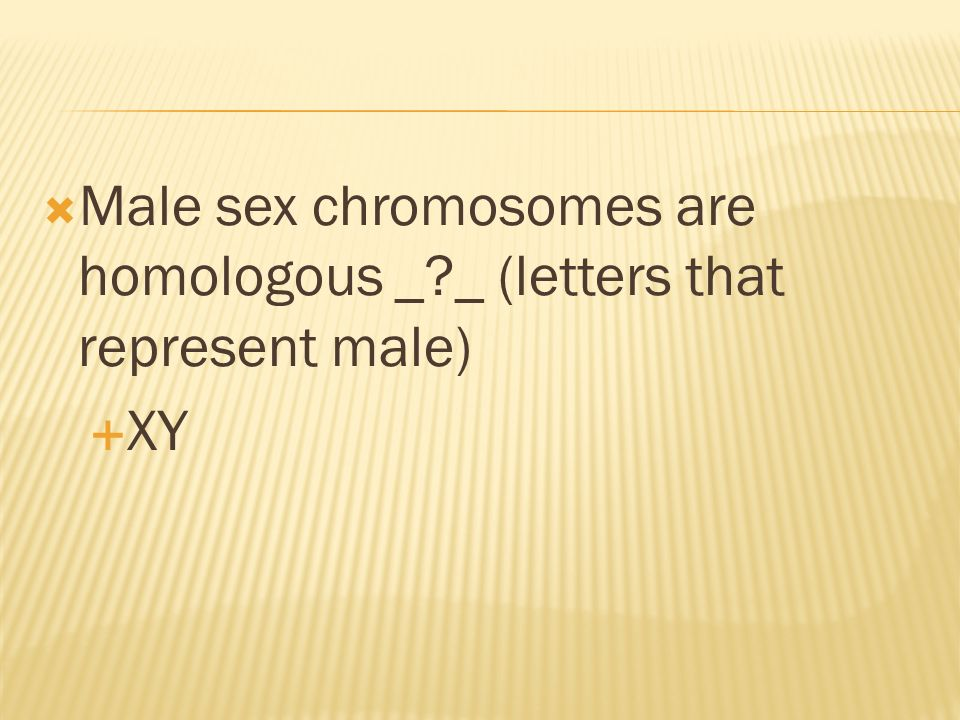 Male sex chromosomes are homologous _ _ (letters that represent male)