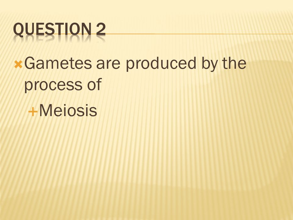 Question 2 Gametes are produced by the process of Meiosis