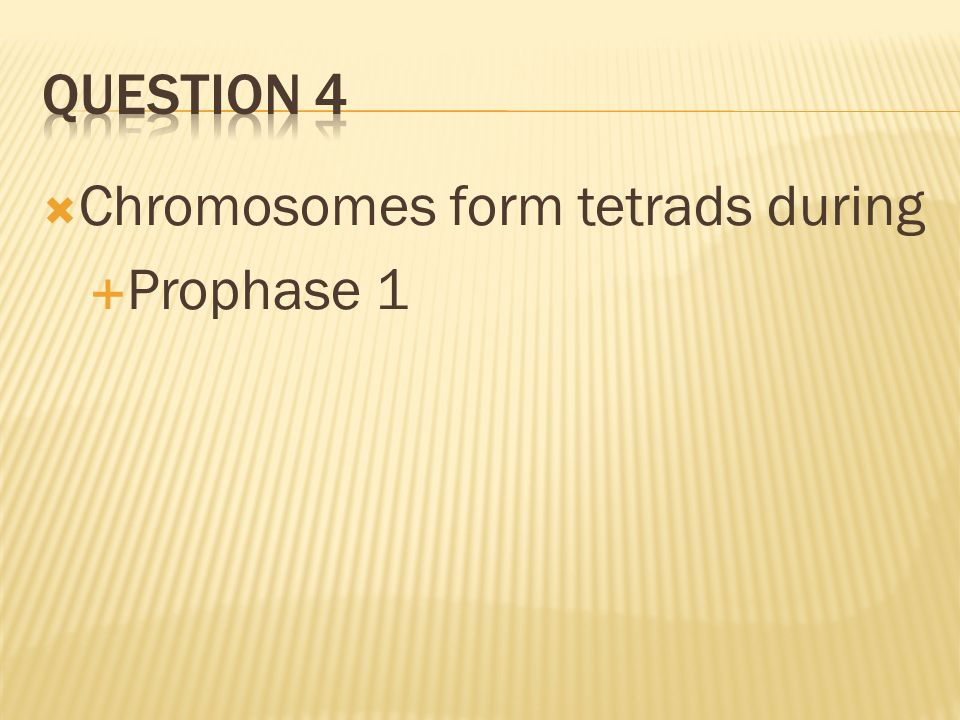 Question 4 Chromosomes form tetrads during Prophase 1